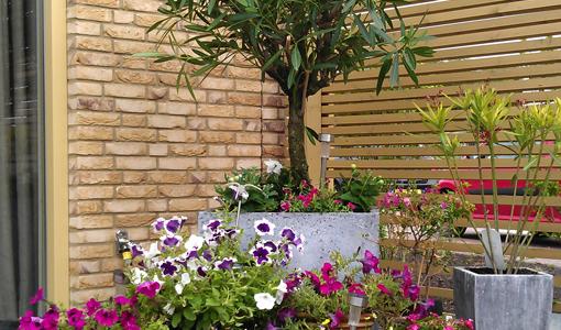 diensten-tuinrenovatie